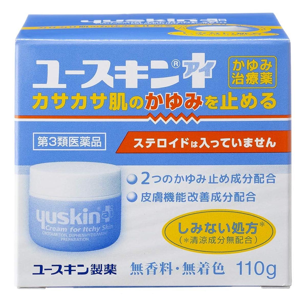 チャペル無効にするハンバーガー【第3類医薬品】ユースキンI 110g