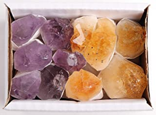 JIC Gem Mix 11-13 pcs Rough Amethyst & Citrine Crystal Point in Box Raw Natural Stones for Jewelry Making, Wire Wrapping, Reiki Crystal Healing (Deep Color)
