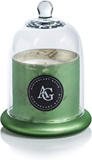 Zodax Apothecary Guild Scented Frosted Candle Jar w/ Glass Dome Black Fig Vetiver Green