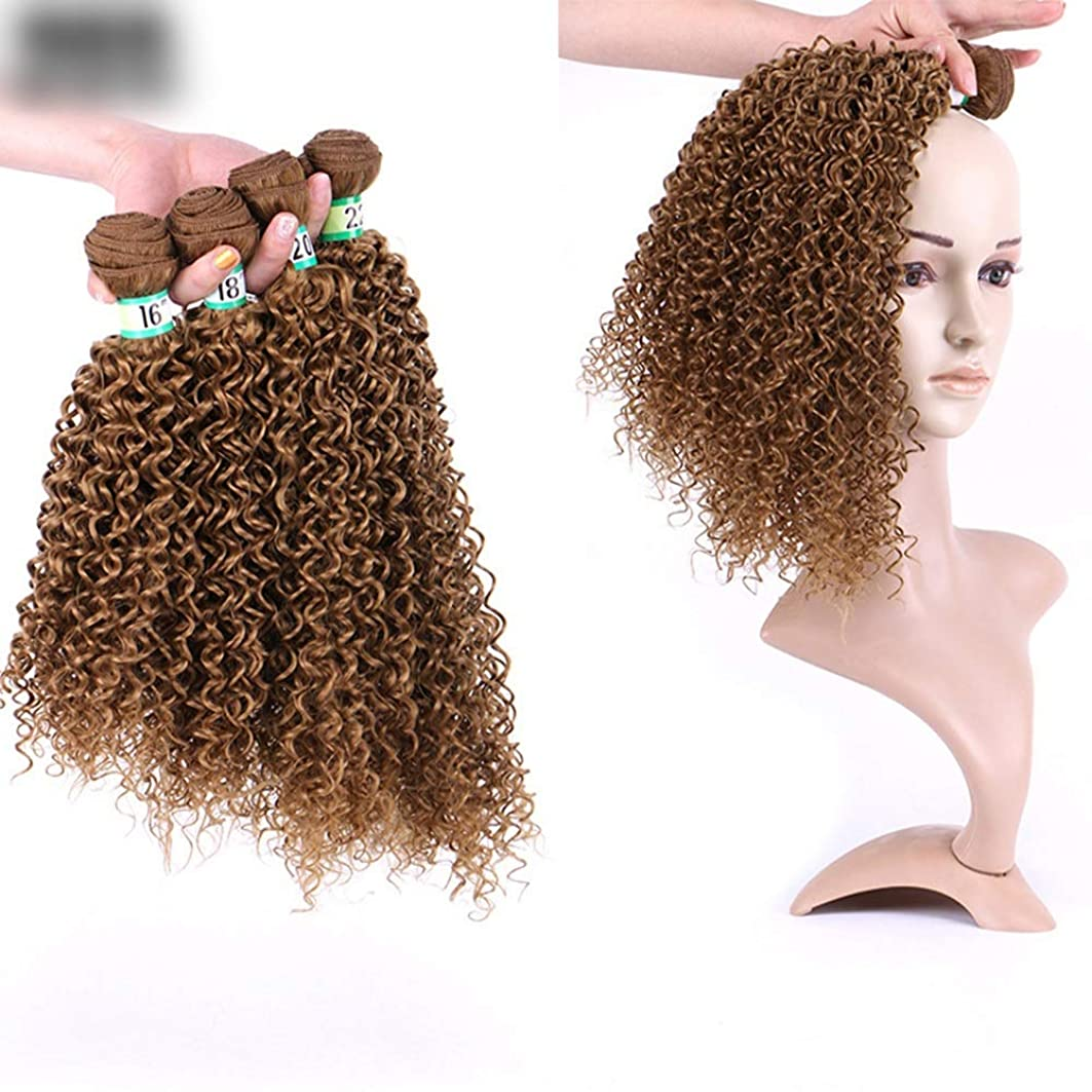 繰り返した苦有害なYrattary ロングカーリーヘアエクステンション16インチブラウン色ブラジルの髪アフロ変態織り方 - 染めることができます - 3束/ロット、100g /束合成髪レースかつらロールプレイングかつら長くて短い女性自然 (色 : ブラウン, サイズ : 18inch)