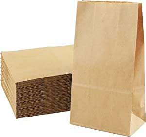 Food Paper Bag 100 Pack Brown Kraft Paper Sandwich Bags Recyclable Grocery Bag for Vegetable Fruit Bakery Cookies Snacks Party Favors Large (9.64 x 5.1 x 3.1 Inch)