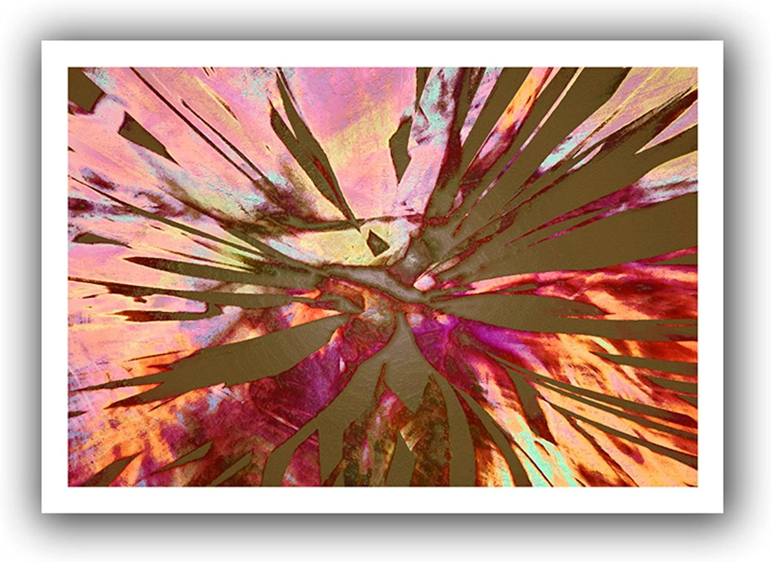 ArtWall Dean Uhlinger Abini Succulent Unwrapped Flat Canvas Artwork, 16 by 22Inch, Holds 12 by 18Inch Image