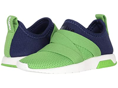 Native Kids Shoes Phoenix (Toddler) (Regatta Blue/Grasshopper Green/Shell White) Boy
