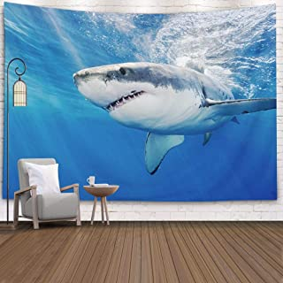 Shorping Father Gift Tapestry, 60x50Inches Home Wall Hanging Tapestries Art for Décor Living Room Dorm Diving Sea Cortez M...