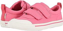 Bubblegum Pink Canvas