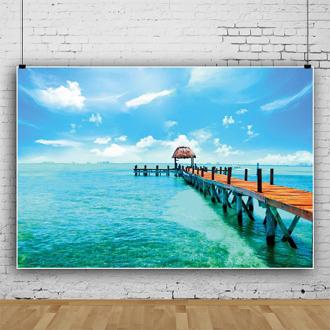sale Leowefowa Tropical Seaside Seascape Backdrop Hawaiia 9x6ft Vinyl Don't miss the campaign