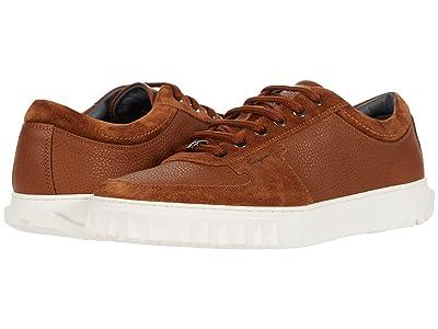 Salvatore Ferragamo Scuby Sneaker (Vicuna) Men