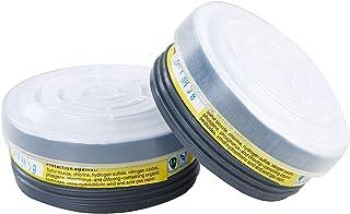 P-E-1 Acid Gas Filter Full Face Respirator Filter Activated Charcoal Air Filter (2PCS LDY7 Filter Cartridges)