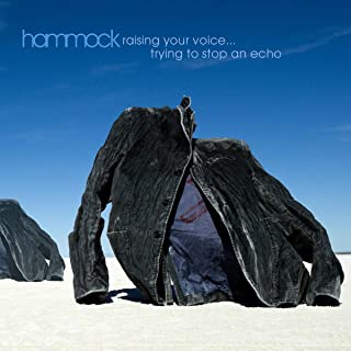 Raising Your Voice...Trying To Stop an Echo