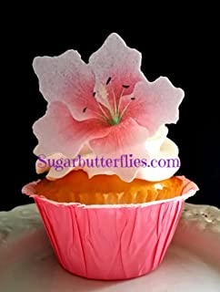 Edible Wafer Paper Star Gazer Lilly Flower Cake Decorations Cupcake Toppers Set of 12