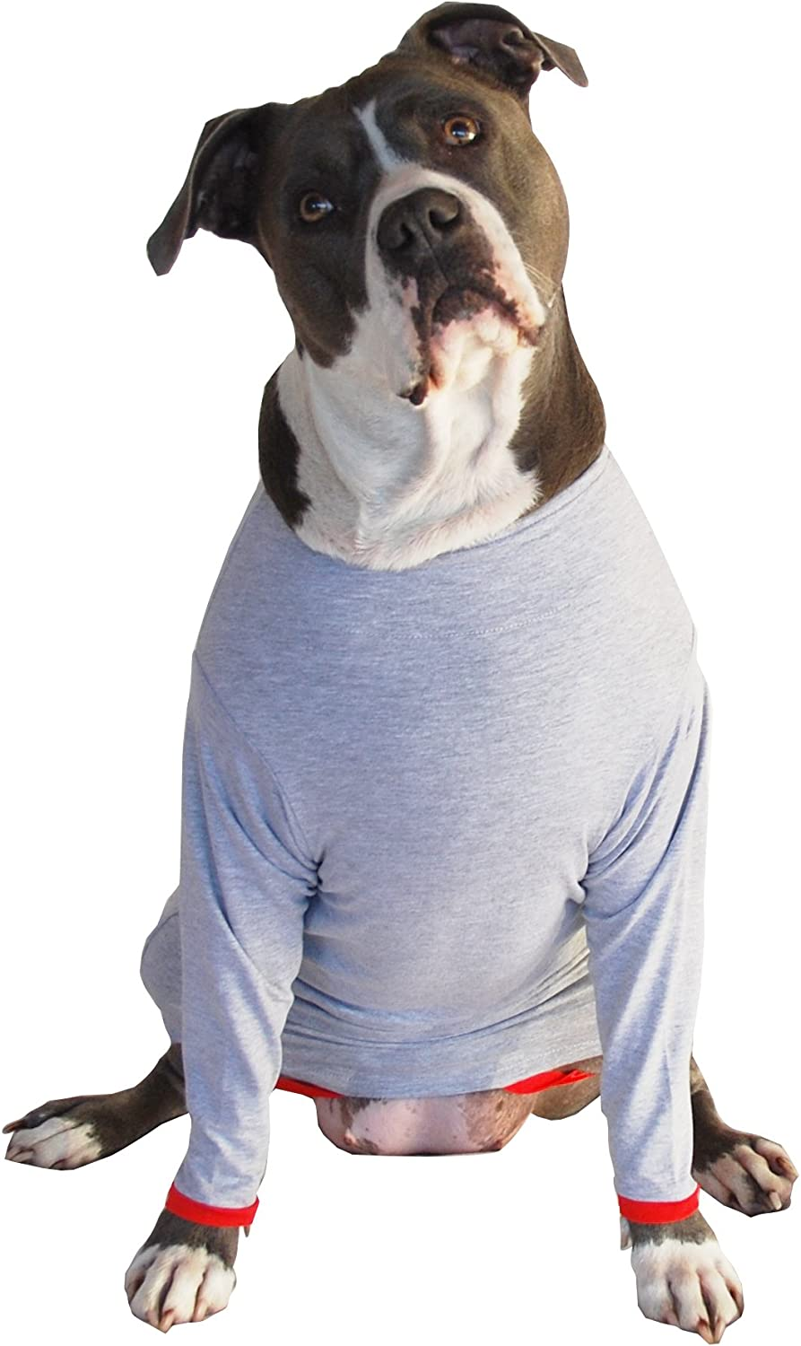 Post Operative Predection Shirt for Dogs (Medium)
