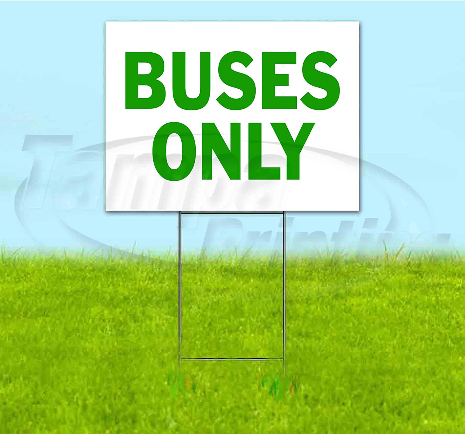 Buses Only 18