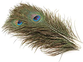 E-outstanding 15pcs 10-12 Inch Natural Colored Peacock Tail Feather with Peacock False Eye for Clothing, Stage Decorations...