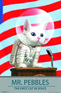 Trends International Fallout 4 - Mr. Pebbles - The First Cat in Space Wall Poster, 22.375