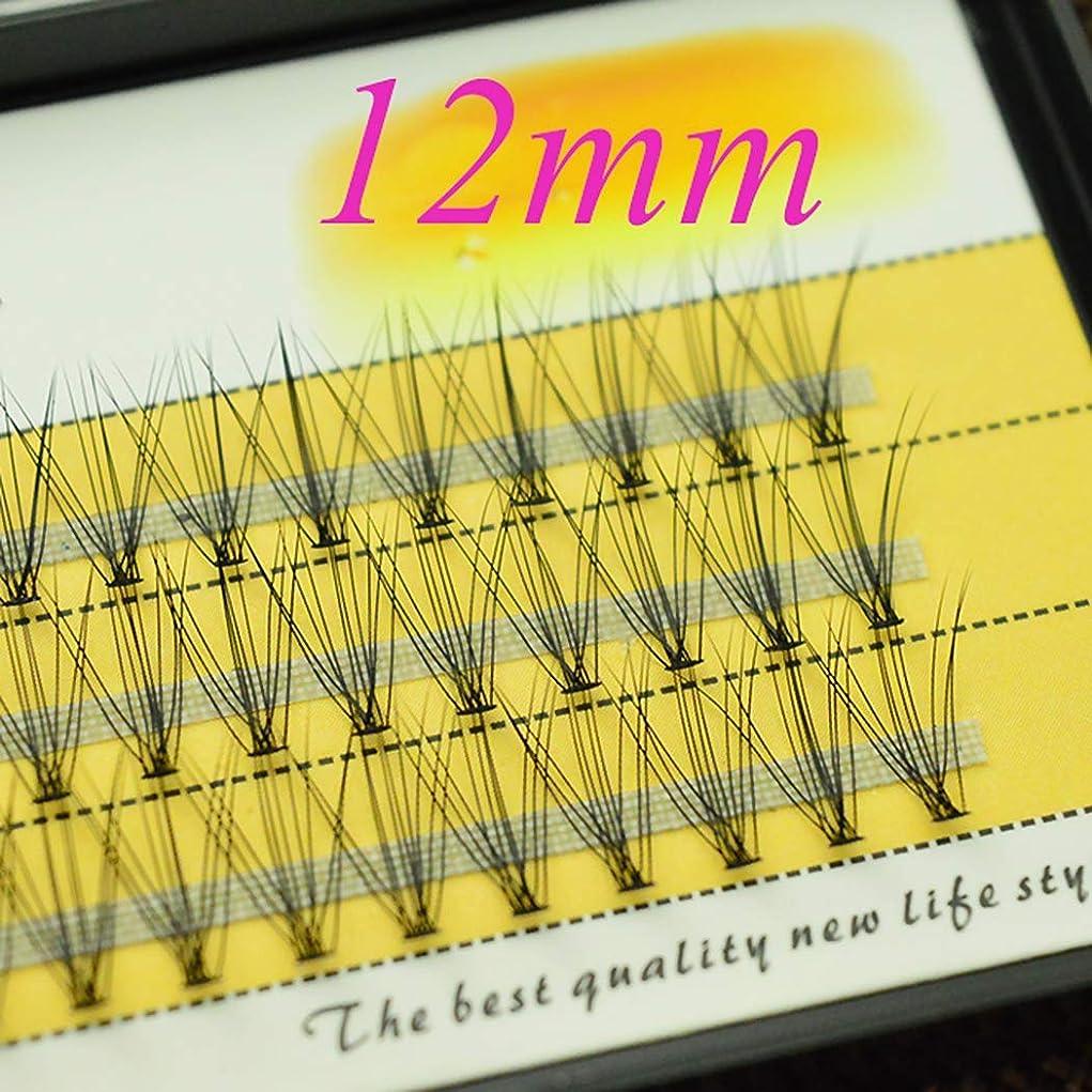 発音証言状つけまつげの接ぎ木、10 Dの手作りのミディアム厚いナチュラルまつげエクステンションメイクアップフェイクソフトアイまつげ,12mm