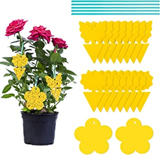 MOOKLIN ROAM 50 Stück Gelbfalle Frucht Fliegenfalle Fliegenfänger Gelbsticker - Doppelseitig Gelbtafeln Perfekt Gegen Trauermücken, Blattläuse, Thripse und weiße Fliegen