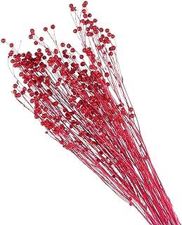 comprar comparacion HUAESIN Ramo de Flores Secas Naturales Pequeñas Ramillete Flor Seca Decoracion Roja Preservadas para Jarrones Maceta Manua...