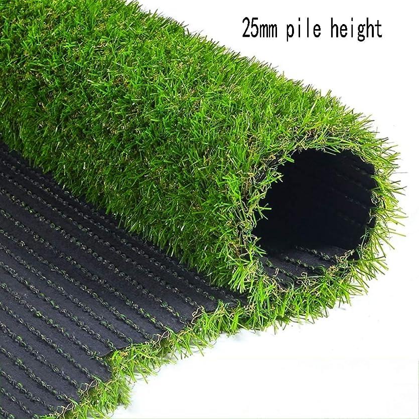 身元以前はシャーXEWNEG 人工的な草の総合的なカーペットのマット25mmの暗号化のシミュレーションのテラスのバルコニーの装飾、カスタマイズ可能なサイズ (Size : 2x2M)