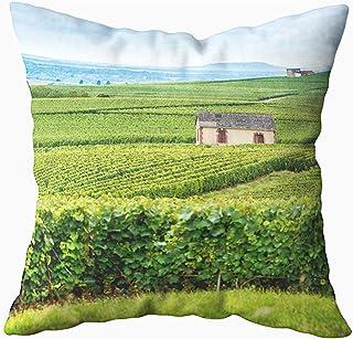 Ducan Lincoln Pillow Case 2PC 18X18,Funda De Almohada Blanda,Fundas De Almohada De Tiro Cuadrado Champagne De Hills Viñedos Cubiertos Francia Montagne Cojín De Ambos Lados