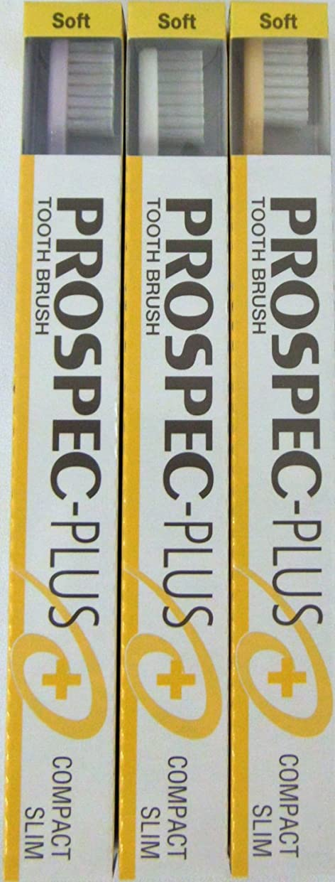 誰かアセパッドGC プロスペック 歯ブラシプラス コンパクトスリム S (3本セット)