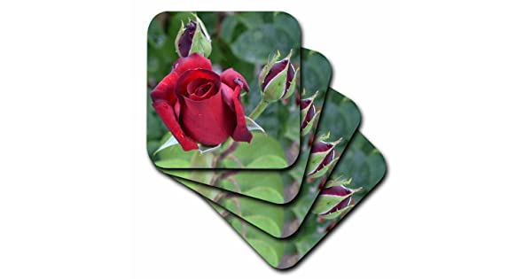Set of 4 3dRose cst/_25679/_1 Red Rose Floral-Soft Coasters