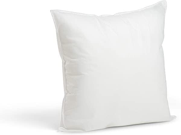 Foamily Premium Hypoallergenic Stuffer Pillow Insert Sham Square Form Polyester 16 L X 16 W Standard White