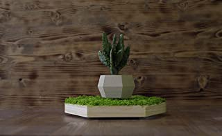 Vaso in legno a levitazione magnetica con muschio stabilizzato realizzato con la tecnica della stampa 3D - Fructus naturae -