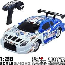 nitro petrol remote control cars
