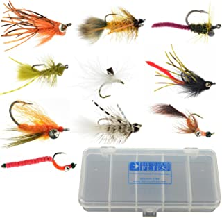 Carp Fly Collection: 10 Flies + Fly Box