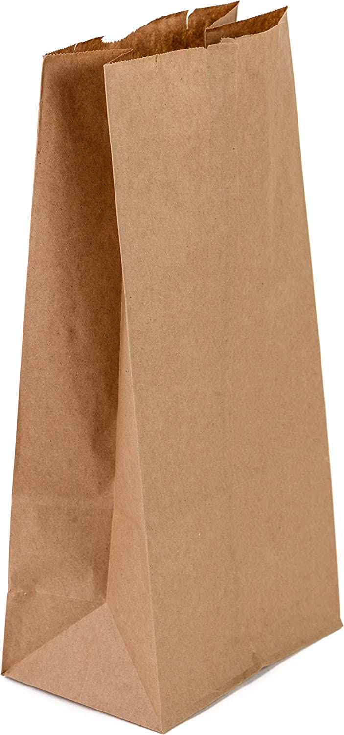 Brown Kraft Paper Bag (8 lb) Small - Paper Lunch Bags, Small Sna