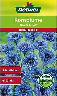 Dehner Blumen-Saatgut, Kornblume, Blauer Junge, 5er Pack 5 x 2 g