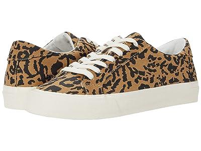 Madewell Sidewalk Low Top Sneakers (Leopard Print Autumn Canvas) Women