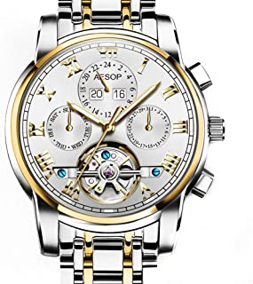 Aesop Luxury Skeleton Men Day Date Analog Automatic Self Winding Mechanical Wrist Watch with Steel Band Luminous Waterproof Silver Gold White