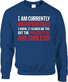 Funny Jumper Currently Unsupervised Endless Possibilities