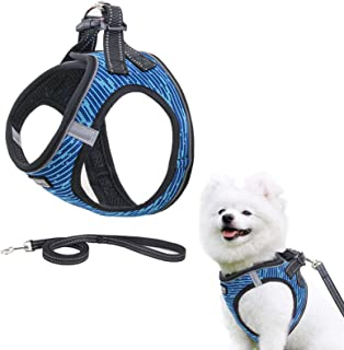 Step-in Air Dog Harness and Leash,Reflective and Breathable Pet Harness,Adjustable Soft Padded Vest Harness for Puppy Smal...