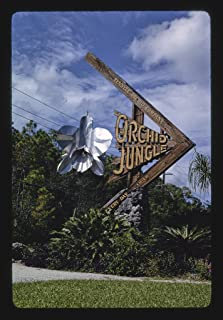 16 x 24 Gallery Wrapped Framed Art Canvas Print of Orchid Jungle Sign, Homestead, Florida 1990 Roadside Americana Ready to Hang 16a