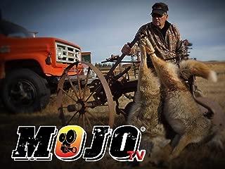 Mojo TV - Season 9