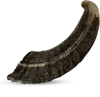 Durkha All Natural Sheep Horn Chews For Dogs | Ethically Sourced Dog Chew Horn | Grain and Gluten Free | Perfect for Small to Medium Sized Dogs