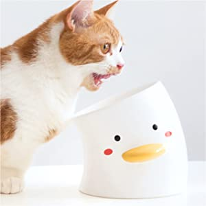 ORANGESCE Cat Bowl with Waterproof Non-Slip Mat ,Large Raised Cat Food Bowls Anti Vomiting, Tilted Elevated Cat Bowl , Ceramic Pet Food Bowl for Adult Cats and Medium Dogs,Protect Pet's Spine