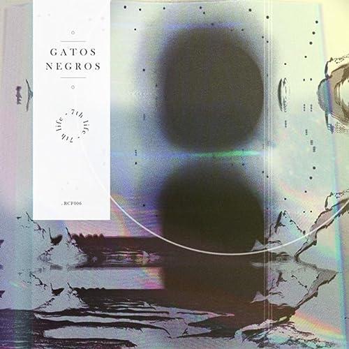 Then I Realised by Gatos Negros on Amazon Music - Amazon.com