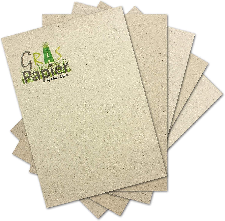 500x 500x 500x Graspapier DIN A4-120 g m² - hergestellt aus Gras von der Schwäbischen Alb - ideales Briefpapier und Bastelpapier - duftet nach Heu - Graspapier by Glüxx-Agent B07NHMJQ6X | Tragen-wider  d3577d