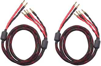 Biwire Speaker Cable