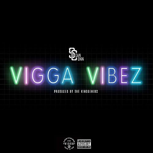 Vigga Vibez [Explicit]