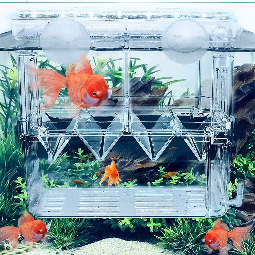 ZUDZUW Fish Breeding Box Tank Max San Antonio Mall 43% OFF Hatche Aquarium Isolation