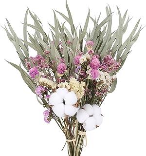 HUAESIN 2pcs Fleurs Séchées Naturelles Fleur Artificielle Bouquet Herbe Sèches Florales Arrangement Branche de Coton pour ...