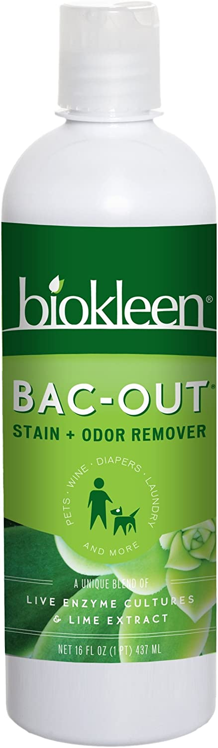 Biokleen BacOut Stain+Odor Remover, Destroys Stains & Odors Safely, for Pet Stains, Laundry, Diapers, Wine, Carpets, & More, EcoFriendly, NonToxic, PlantBased, 16 Ounces (Pack of 12)