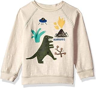 Gymboree Boys' Big Long Sleeve Pullover Sweater