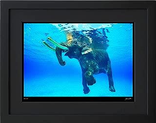 【写真工房アートフォト 額装写真】 泳ぐ象・ラジャン/アンダマン諸島/インド(ブラック 通常サイズ 426mm×336mm)