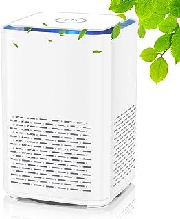 QUARED Purificador de Aire Portátil con Filtro HEPA, USB Filtro de Aire de Escritorio, con Función de Aromaterapia, Luz No...