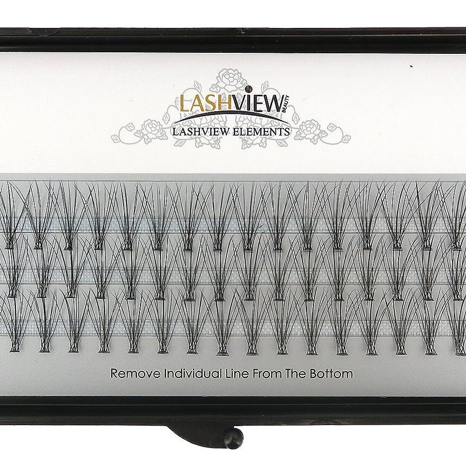 無視サラダ結婚するLASHVIEW 高品質まつげエクステフレア セルフ用 超極細素材 太さ0.07mm 12mm Cカール マツエク10本束